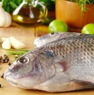 zanrooz-cooking-fish-cooking