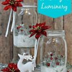 18-Captivating-DIY-Christmas-Mason-Jars-4